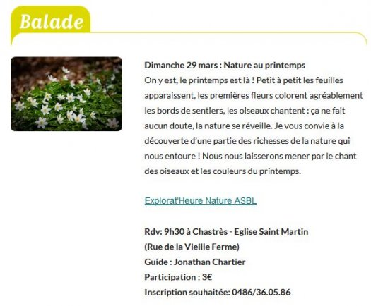 BALADE : Nature au Printemps